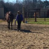 Walking her dog-I mean horse-back to the pasture