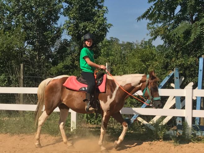 Still riding horses