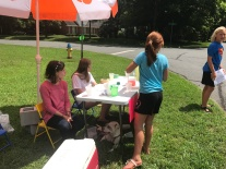 Summer lemonade stands