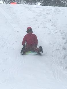 Sawyer sledding