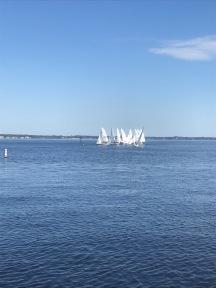 Sailing 420s
