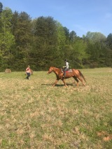 Parks galloping on Oliver. Oliver enjoyed the open field.
