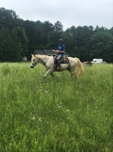 Riding in the field