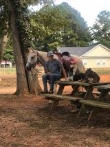 Hanging at the barn