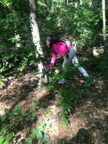 Geocaching on our 4H hike