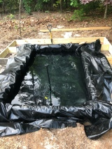 We started a pond project!
